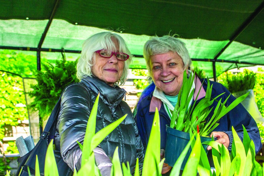 Horticultural Society sale co-chair Sandy Bott, right, helps customers find the right plants for their gardens. (Richard Harley/Niagara Now)