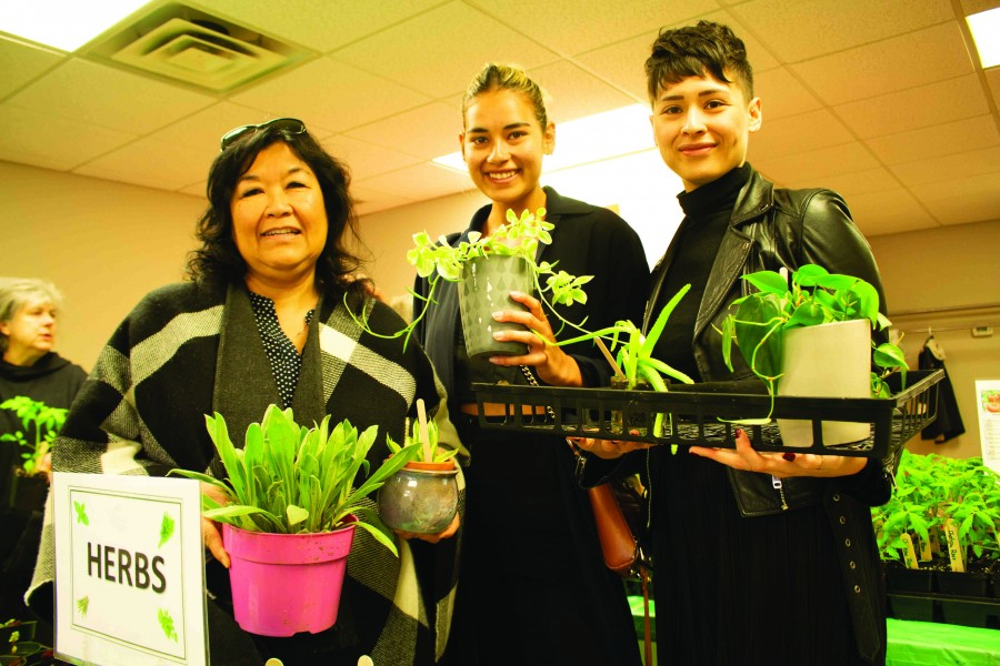 Dororthy, Brianna and Jessica Wiens shop for plants at the Horticultural Society fundraiser sale last Saturday. (Richard Harley/Niagara Now)