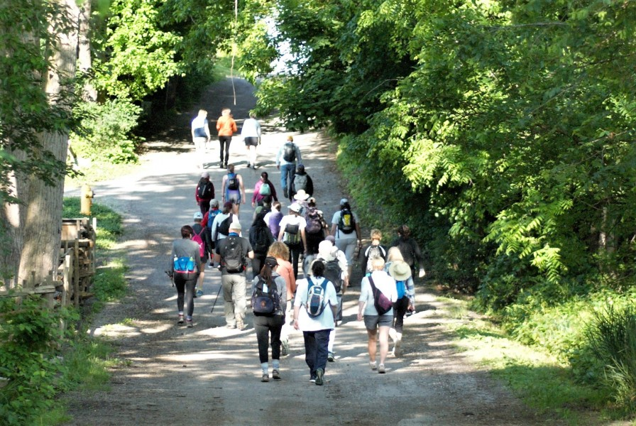 The group walks the first leg of the hike early on Saturday morning. (Brittany Carter/Niagara Now)